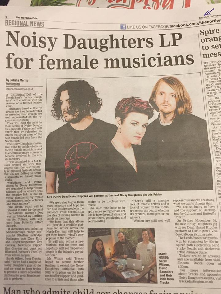 Northern Echo - Noisy Daughters LP